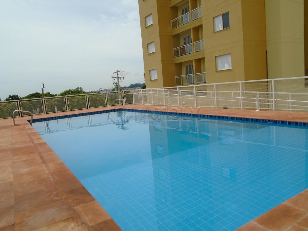 Alugar Apartamento / Padrão em Americana apenas R$ 900,00 - Foto 23