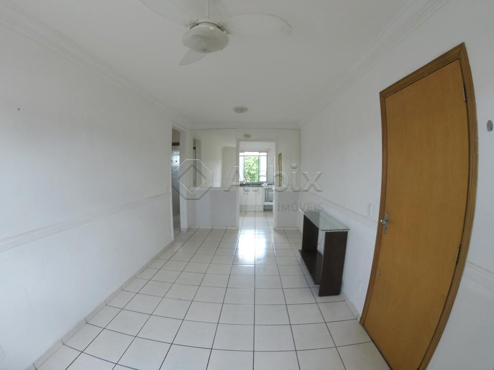 Alugar Apartamento / Padrão em Americana apenas R$ 750,00 - Foto 10