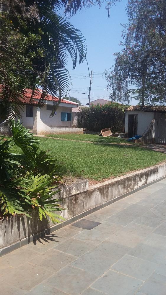 Comprar Rural / Chácara em Americana apenas R$ 600.000,00 - Foto 37