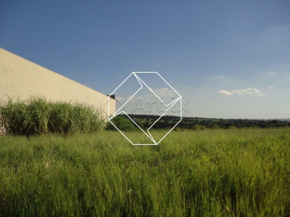 Comprar Terreno / Área em Nova Odessa apenas R$ 580.000,00 - Foto 7