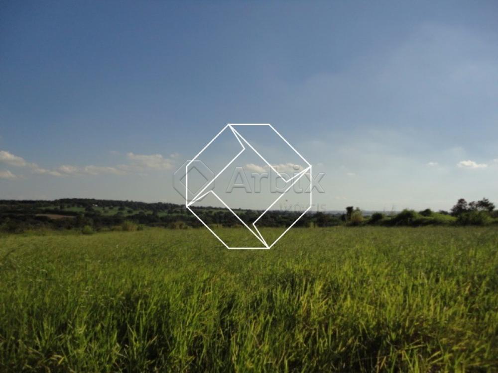 Comprar Terreno / Área em Nova Odessa apenas R$ 580.000,00 - Foto 3
