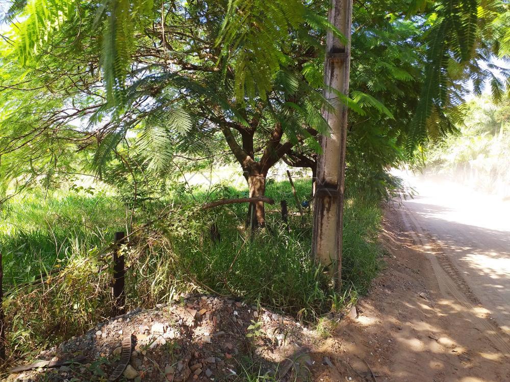 Comprar Rural / Chácara em Limeira apenas R$ 650.000,00 - Foto 1