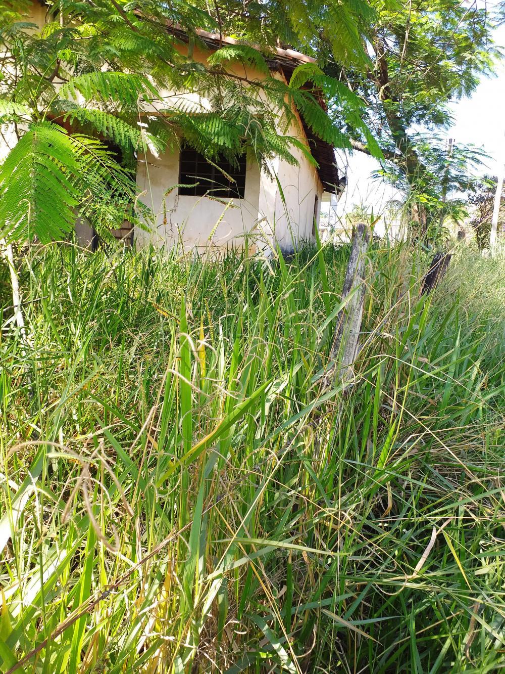 Comprar Rural / Chácara em Limeira apenas R$ 650.000,00 - Foto 9