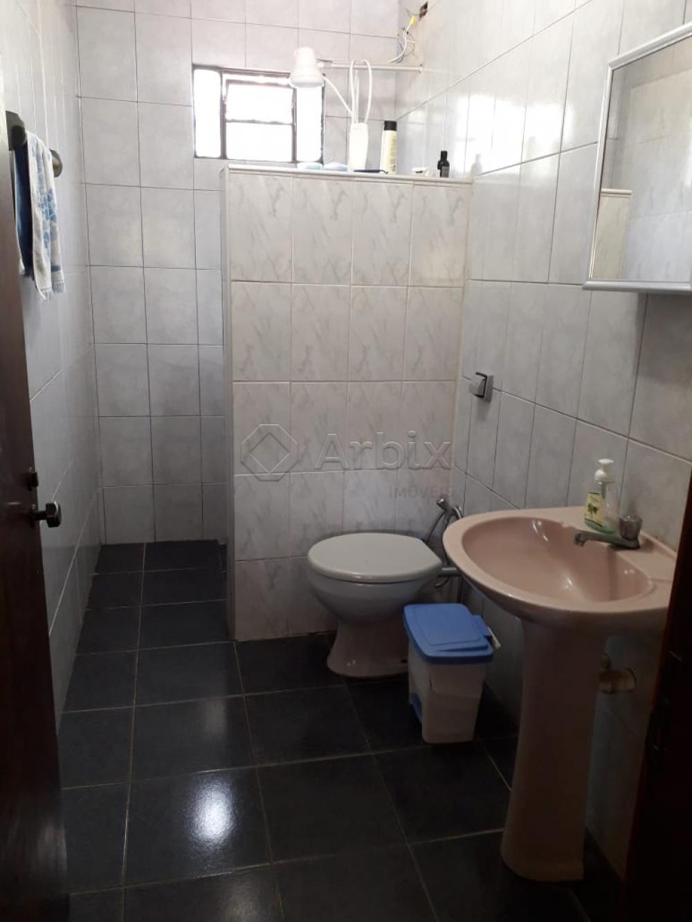 Alugar Rural / Chácara em Nova Odessa apenas R$ 1.800,00 - Foto 21