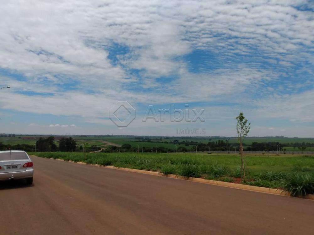 Comprar Terreno / Condomínio em Nova Odessa apenas R$ 230.000,00 - Foto 32