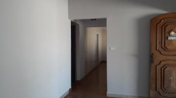 Alugar Casa / Padrão em Americana apenas R$ 1.500,00 - Foto 7