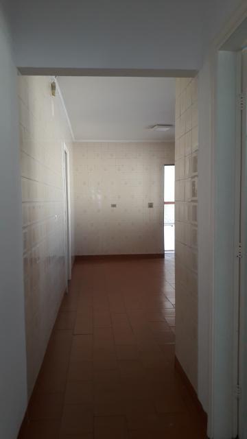 Alugar Casa / Padrão em Americana apenas R$ 1.500,00 - Foto 8
