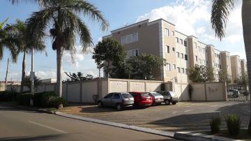 Alugar Apartamento / Padrão em Americana apenas R$ 850,00 - Foto 26