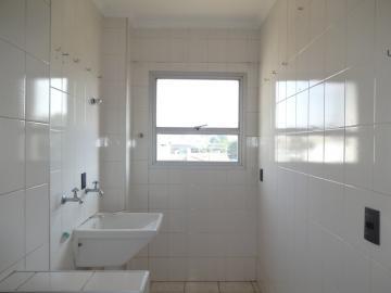 Alugar Apartamento / Padrão em Americana apenas R$ 650,00 - Foto 5