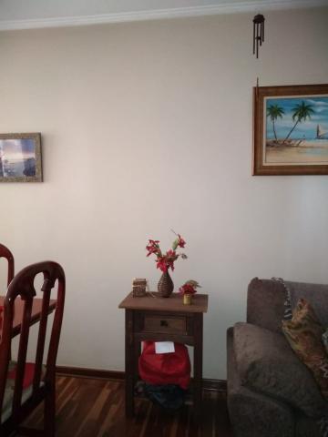 Comprar Apartamento / Padrão em Americana apenas R$ 280.000,00 - Foto 12