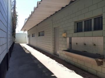 Alugar Comercial / Salão Industrial em Americana apenas R$ 18.000,00 - Foto 14