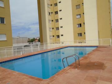 Alugar Apartamento / Padrão em Americana apenas R$ 900,00 - Foto 25