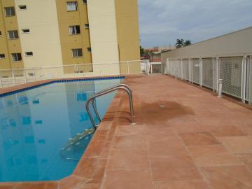 Alugar Apartamento / Padrão em Americana apenas R$ 900,00 - Foto 27