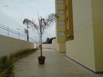 Alugar Apartamento / Padrão em Americana apenas R$ 900,00 - Foto 30