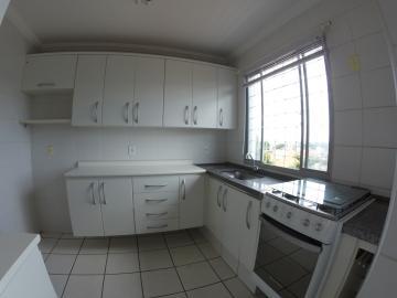 Alugar Apartamento / Padrão em Americana apenas R$ 750,00 - Foto 14
