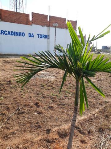 Alugar Terreno / Padrão em Artur Nogueira. apenas R$ 150.000,00
