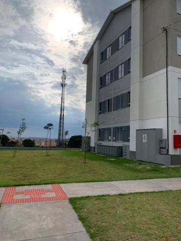 Alugar Apartamento / Padrão em Santa Bárbara D`Oeste apenas R$ 687,00 - Foto 14
