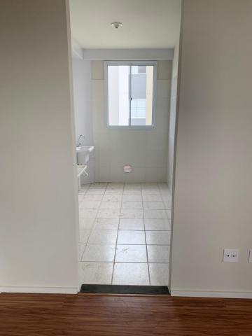 Alugar Apartamento / Padrão em Santa Bárbara D`Oeste apenas R$ 687,00 - Foto 2