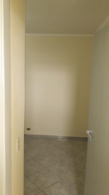 Alugar Apartamento / Padrão em Americana apenas R$ 850,00 - Foto 37