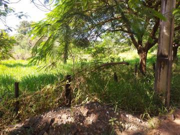 Comprar Rural / Chácara em Limeira apenas R$ 650.000,00 - Foto 3