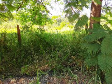 Comprar Rural / Chácara em Limeira apenas R$ 650.000,00 - Foto 12