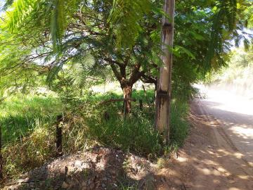 Comprar Rural / Chácara em Limeira apenas R$ 650.000,00 - Foto 11