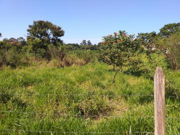 Comprar Rural / Chácara em Limeira apenas R$ 650.000,00 - Foto 13