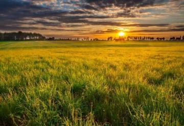 Comprar Terreno / Condomínio em Nova Odessa apenas R$ 176.000,00 - Foto 1