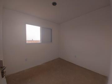 Alugar Apartamento / Padrão em Santa Bárbara D`Oeste apenas R$ 600,00 - Foto 11