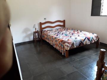 Alugar Rural / Chácara em Nova Odessa apenas R$ 1.800,00 - Foto 10