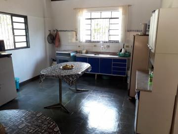 Alugar Rural / Chácara em Nova Odessa apenas R$ 1.800,00 - Foto 19