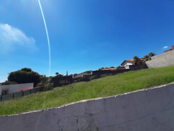 Americana Vila Santa Maria Area Venda R$3.600.000,00  Area do terreno 2400.00m2