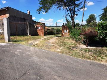 Paulinia Saltinho Rural Venda R$1.650.000,00  Area do terreno 5000.00m2