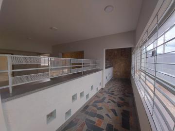 Americana Centro Comercial Locacao R$ 8.000,00  3 Vagas Area do terreno 330.00m2 Area construida 315.00m2